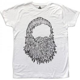 M Beard